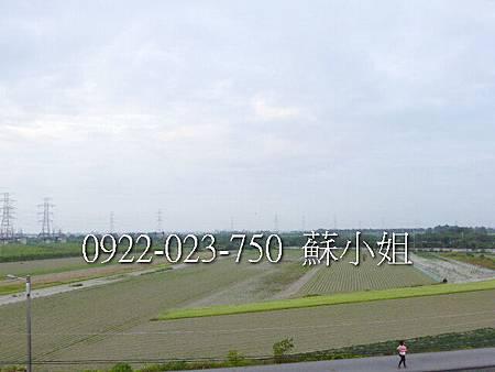 P1080461 (2)