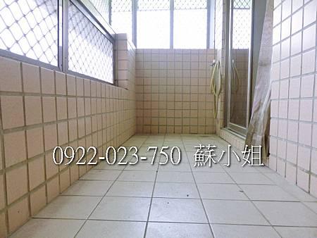 P1100361 (2)