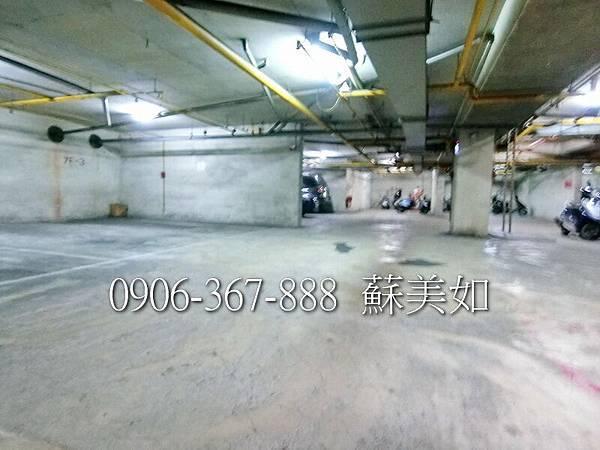 CIMG4798 (2)