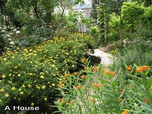 2008五月花季7
