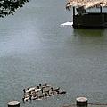 交通大學-竹湖