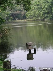 湖(綠世界生態農場)