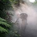 水氣(綠世界生態農場)