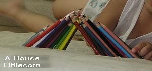 排列:色鉛筆全插在布沙發的夾縫(2y10m)