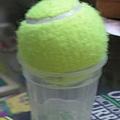 Ice cream(2y11m3w)