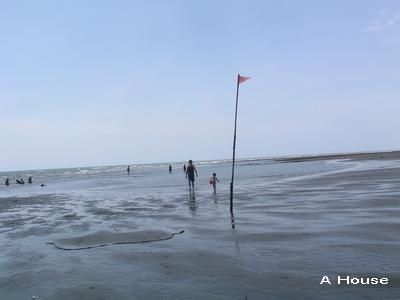 崎頂海水浴場3(3y2w)