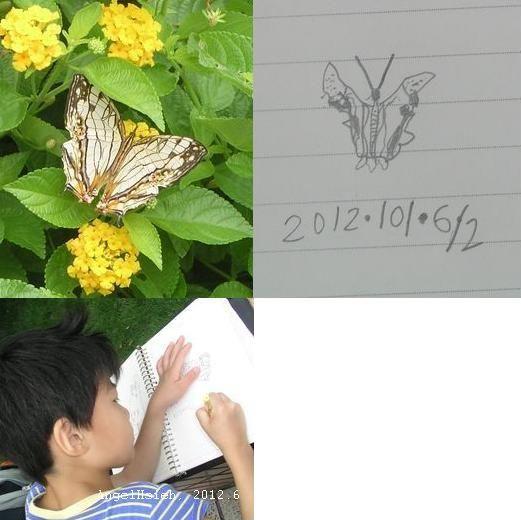 天文館旁的醫院大門口前花圃畫蝴蝶(2012.6)