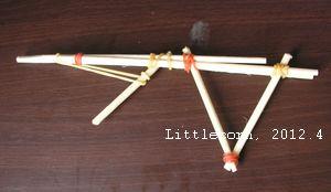 竹槍(6y9m)