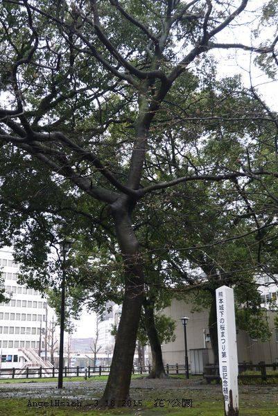 熊本市花畑公園