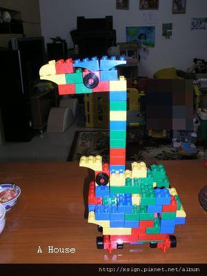 鳥(5y8m)