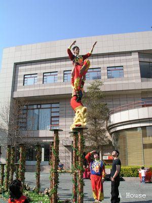 飛鴻館舞獅表演