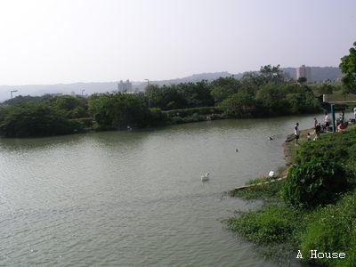 高雄美術館(2009.3)
