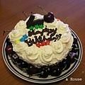 2009年手作生日蛋糕
