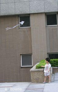 Alex做的風箏(2009.9.5)
