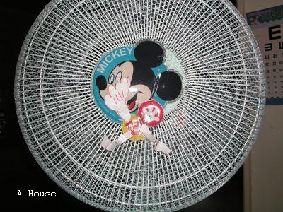 Mickey (5y2m)