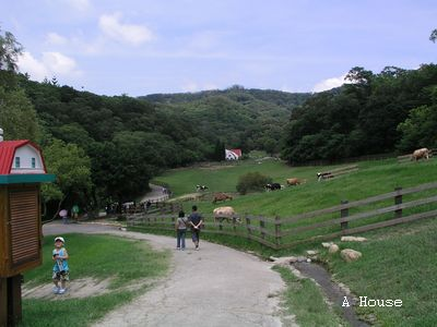 飛牛牧場(2010.6)