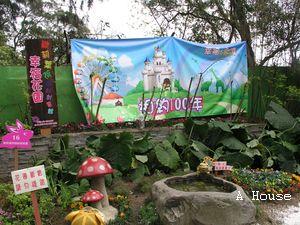 2011十八尖山賞花月(2011.3.5)