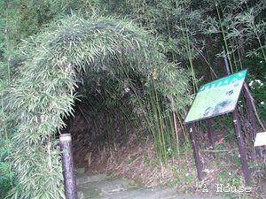 陳家農場 2010.9