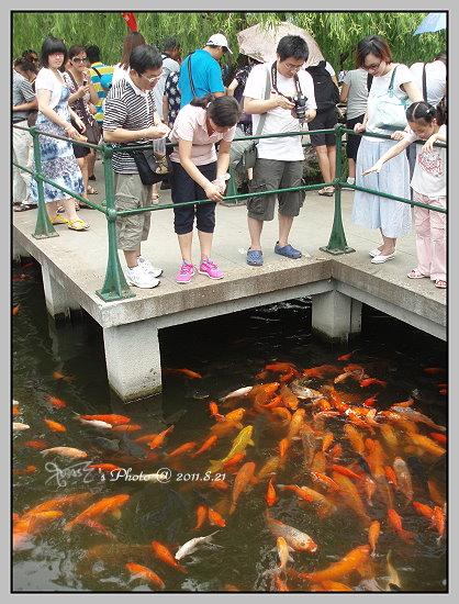 杭州西湖一日遊21.JPG