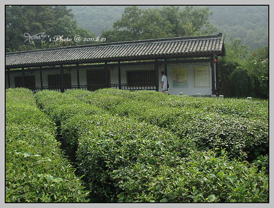 杭州西湖一日遊34.JPG