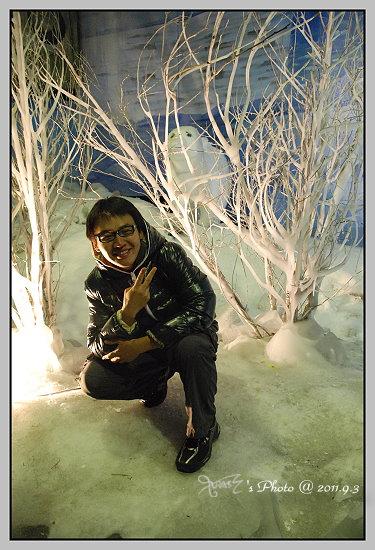 南北極地風光展覽館11.JPG