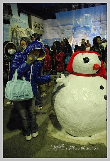 南北極地風光展覽館12.JPG