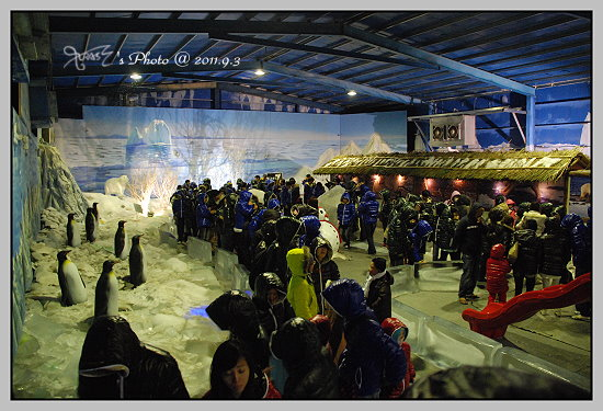 南北極地風光展覽館16.JPG