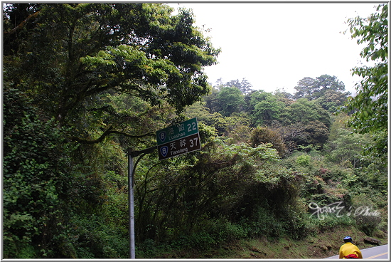 踩車遊記51-93.JPG