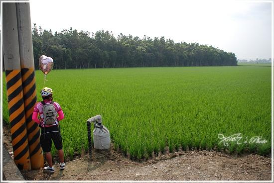 2010媽祖萬人崇Bike27.JPG