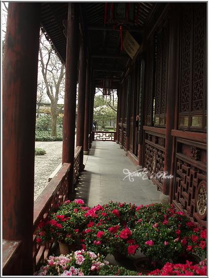 蘇州博物館9.JPG