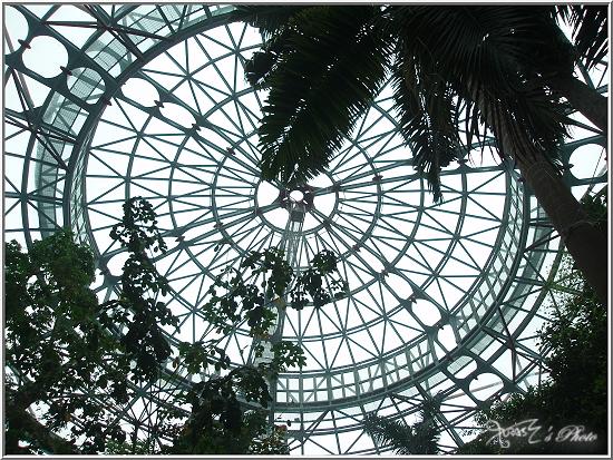 熱帶雨林植物園1.JPG
