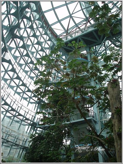 熱帶雨林植物園3.JPG