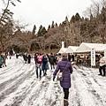 日本秋田 新山裸祭DSC_1239