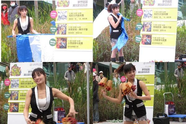 20110122_Taipei_Flora016.jpg