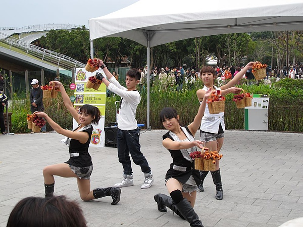 20110122_Taipei_Flora033.JPG