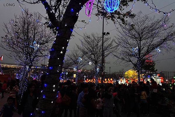 2013台灣燈會-周邊燈區008