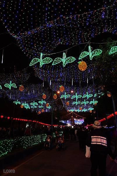 2013台灣燈會-周邊燈區012