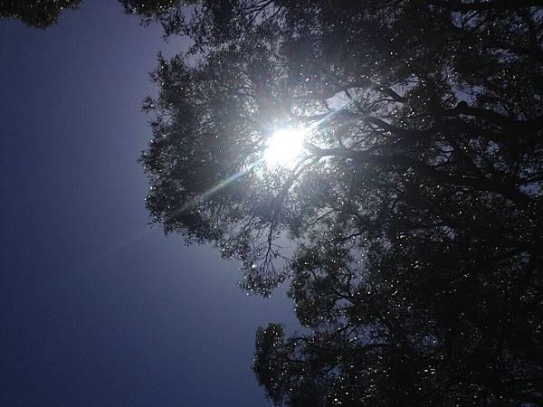 相片 2014-10-27 下午12 54 01.jpg