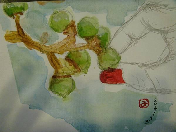 手摘(66)