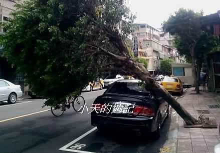 可怕的蘇迪勒颱風 [Typhoon Soudelor hits Taiwan]1