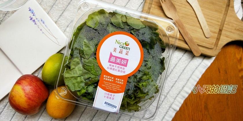 【NICE GREEn】美蔬菜盒 綠菁晶 蔬果汁3.jpg