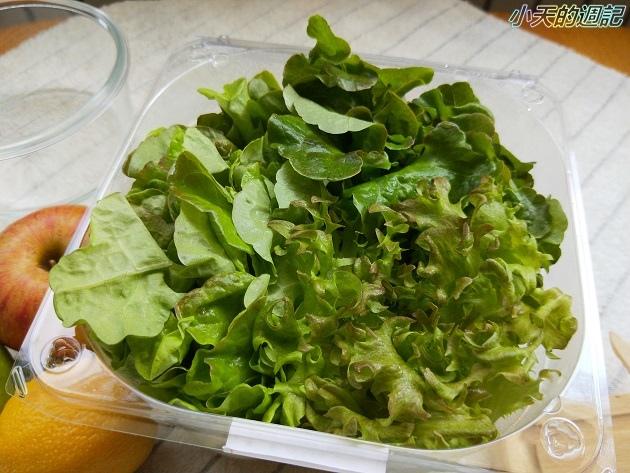 【NICE GREEn】美蔬菜盒 綠菁晶 蔬果汁9.jpg