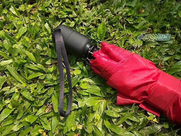 【雨傘推薦‧自動傘推薦】英國精品傘亞伯尼A.brolly防撞自動傘16.jpg