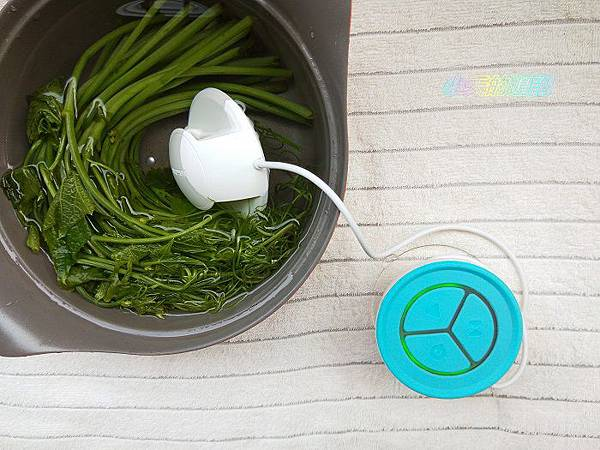 【Topmore】蔬活球水質檢測器Fluid Scanner15.jpg