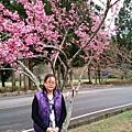 FB_IMG_13939153662636241