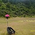 松蘿湖2010/7/....
