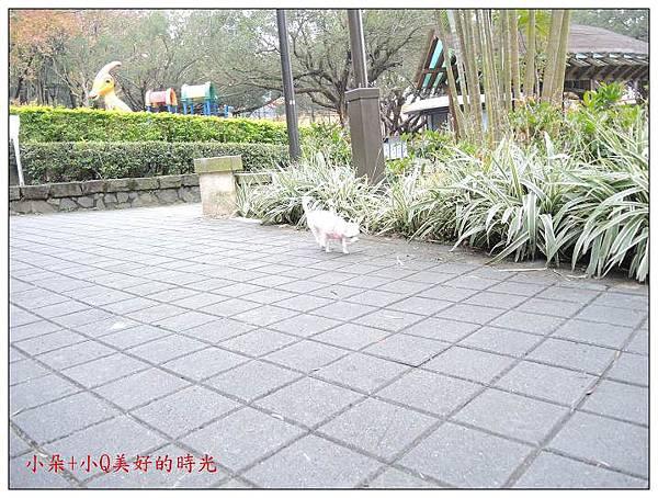 nEO_IMG_照片 066.jpg
