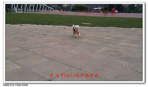 nEO_IMG_87 (5).jpg