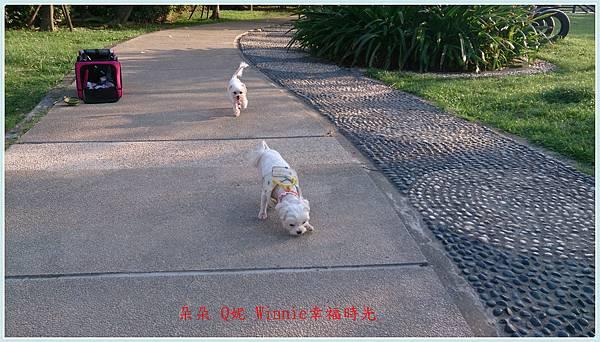 DSC_0158_副本.jpg