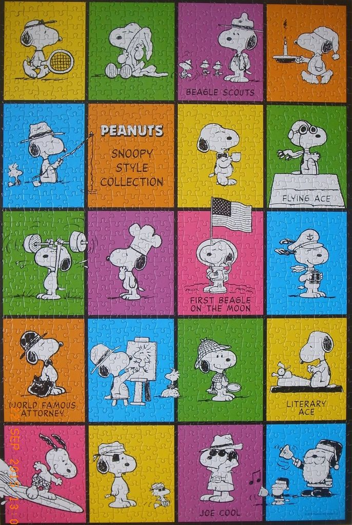 snoopy style collection.JPG